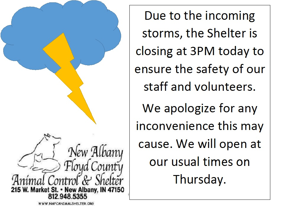 Weather New Albany Floyd County Animal Shelter View current times in all indiana cities and towns. weather new albany floyd county animal shelter